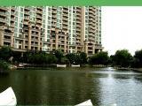中驰湖滨花园3室2厅2卫142㎡性价比高新七小学区