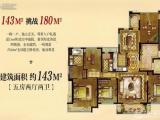 悦荣府   142.62平    10楼 东边套   1.75万/平
